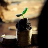 Как приспособиться к маленькой зарплате