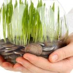 Полезные финансовые привычки